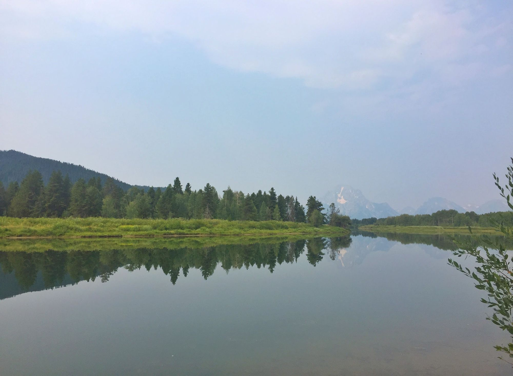 Exploring Wildlife in Yellowstone & Grand Teton Nation Park - Part 3