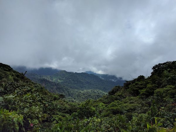 Monteverde, Costa Rica - Travel Diaries